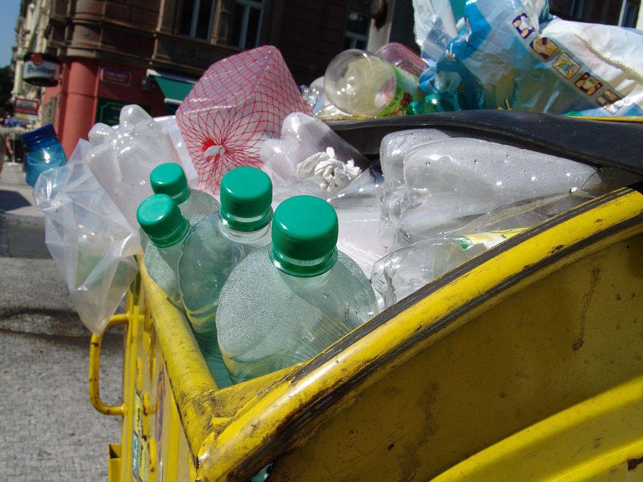 Empaques biodegradables hechos de avena