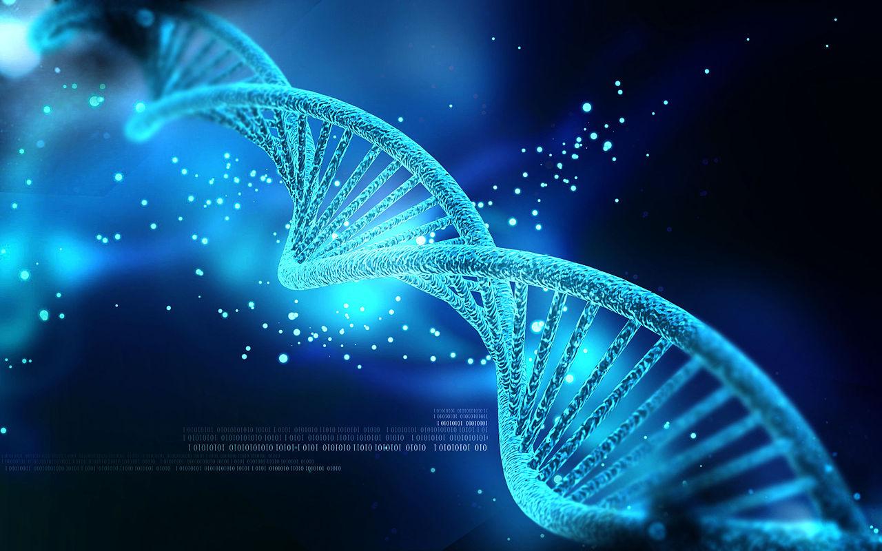 El origen de los genes nuevos