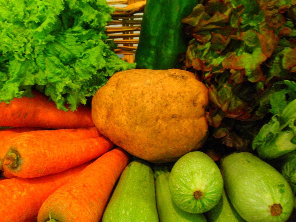 Alimentos para apoyar la salud inmune