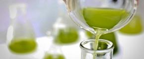 Aceite de algas para reducir los triglicéridos