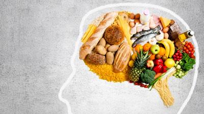 Apetito, cerebro y hormonas
