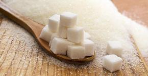 Puntos de discusión: La ciencia de los azúcares
