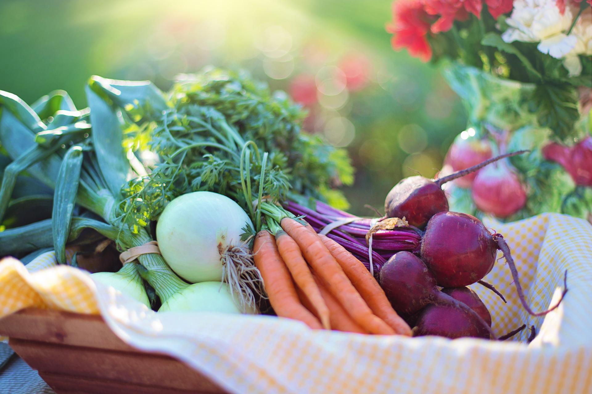 ¡Verduras de colores!