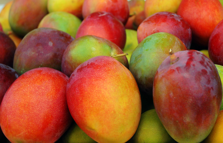 Aprovechamiento integral de frutas y plantas tropicales