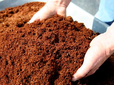 Sustratos para la agricultura orgánica