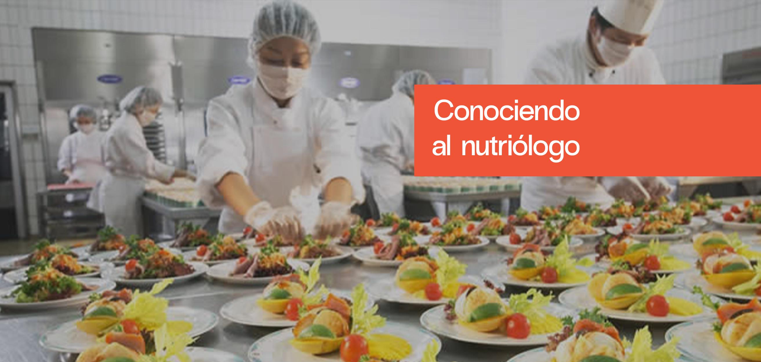 Áreas de especialidad del nutriólogo: servicios de alimentación